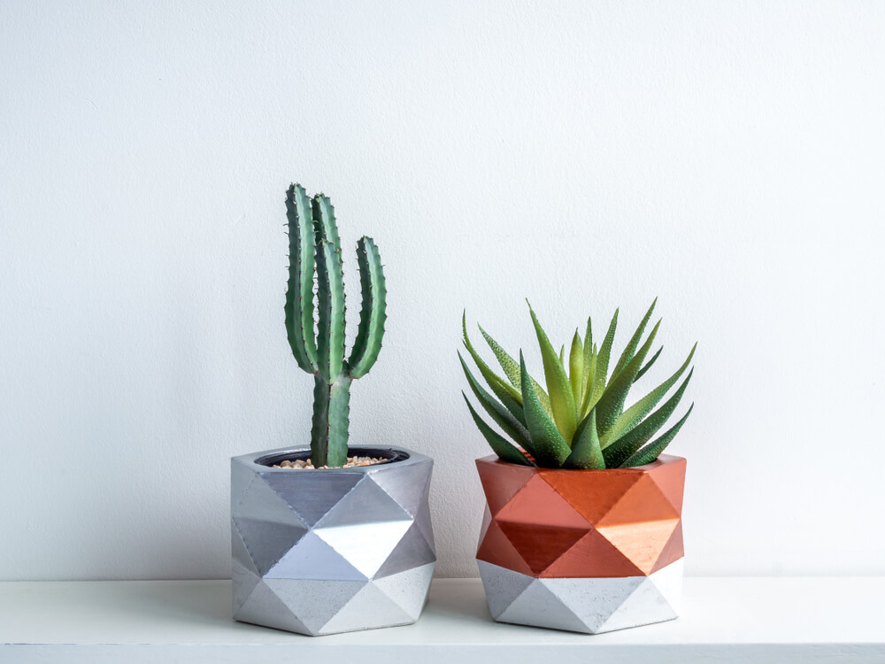 plant pots painted in metallic color diy home project stay home